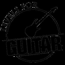 levelsforguitar.com logo brand